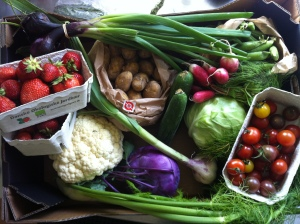Grønsager i sæson og høstet i ens omegn er godt!