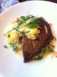 Lunch dish at Perho: lake white fish (helt/sik)  with risotto, cale and sauce hollandaise with crayfish
