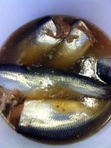 Salt sild fås hos fiskehandleren og skal udvandes og derefter marineres. Når der står gammeldagsmodnede sild er de saltede i mange måneder.